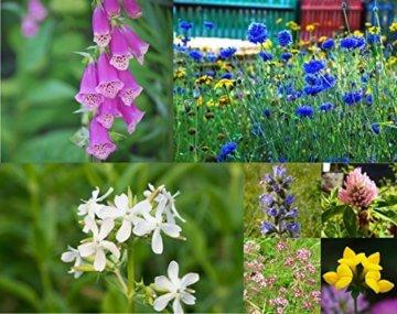 Samenbälle BIENEN MISCHUNG: Eine Wunderschöne Hilfe Für Bienen Durch Wildblumensamen. Ein Tolles Garten Geschenk - 2